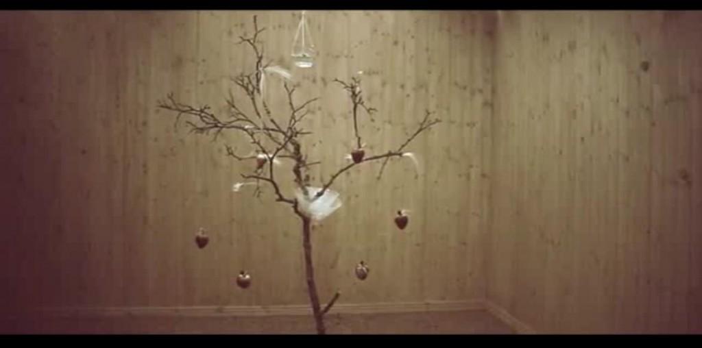 endtreecandlefruitscollar